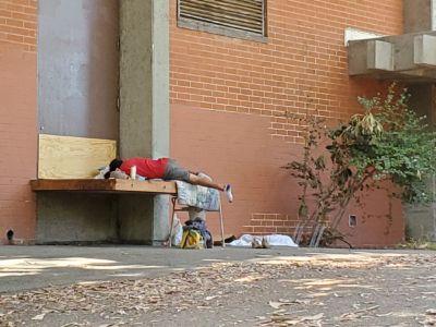 Peck Park Homeless